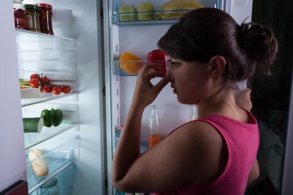 refrigerator ice tastes bad